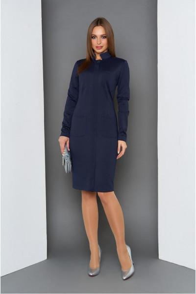 Синє стильне плаття для повних жінок