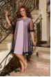 Пудрове романтичне ошатне плаття для повних жінок