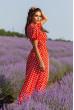 Червоне яскраве плаття міді з принтом в горох