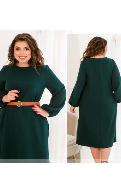 Зелене лаконічне плаття з прикрасою